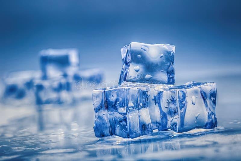 Cubetti di ghiaccio bagnati su fondo blu fotografia stock