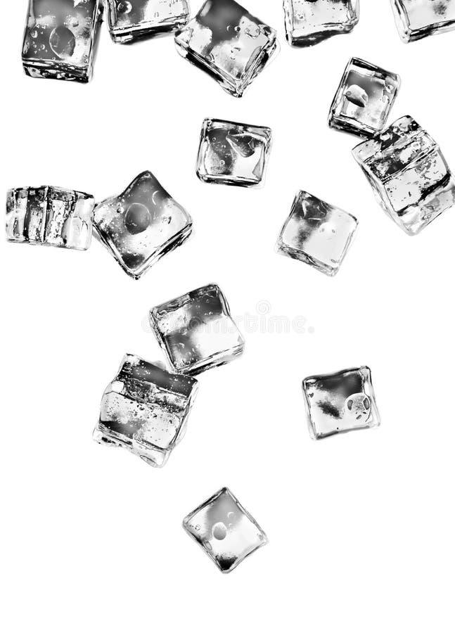 Cubetti di ghiaccio messi isolati su fondo bianco immagine stock