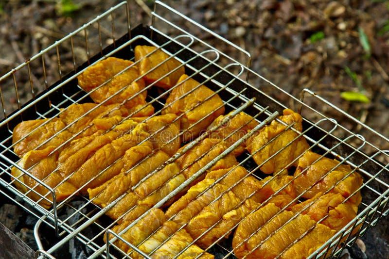 Cubi di carne marinata in una griglia della griglia all'addetto alla brasatura kebab del barbecue sui outdors dei tizzoni picnic  immagini stock libere da diritti