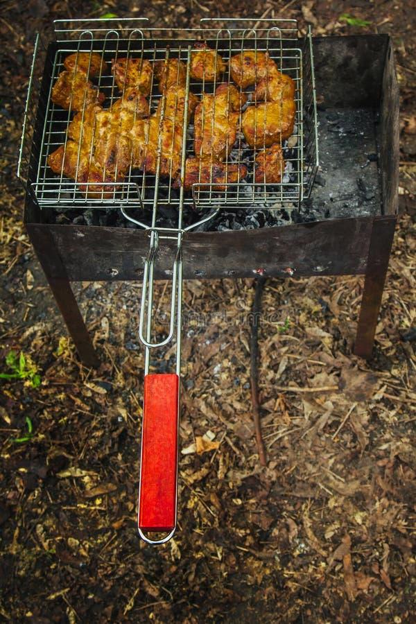 Cubi di carne marinata in una griglia della griglia all'addetto alla brasatura kebab del barbecue sui outdors dei tizzoni picnic  fotografia stock
