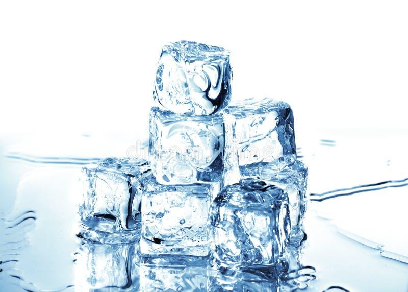 Download Cubi di ghiaccio 4 fotografia stock. Immagine di liquido - 3138986