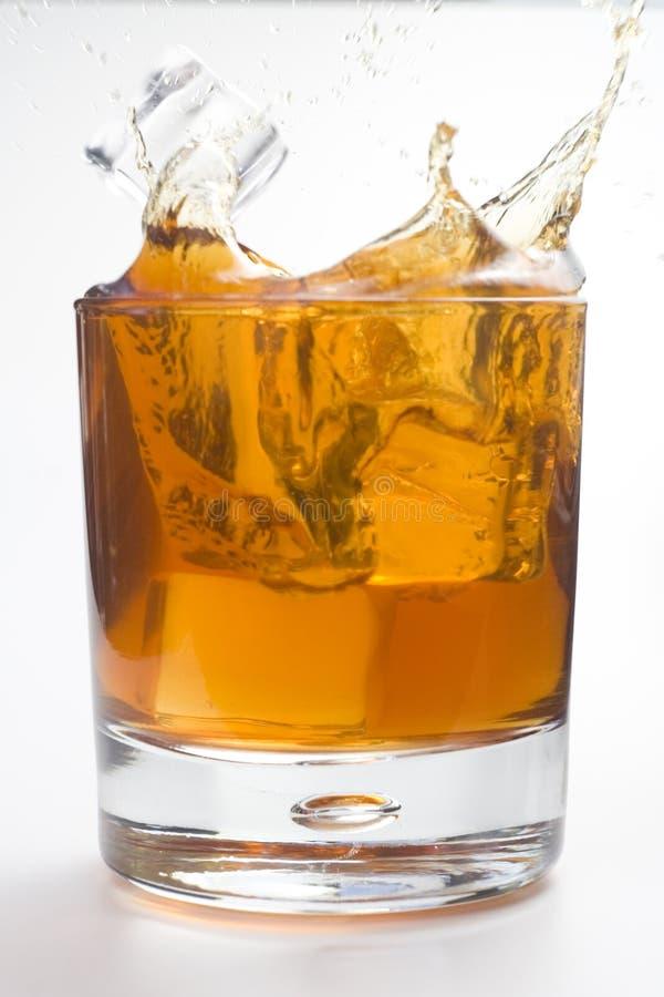 Cubi di ghiaccio del whith della bevanda alcolica immagine stock libera da diritti