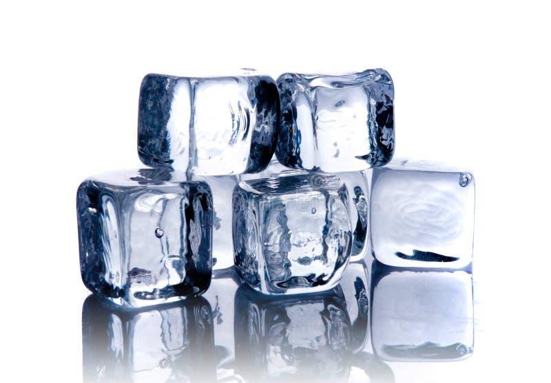 Cubi di ghiaccio di fusione immagine stock libera da diritti