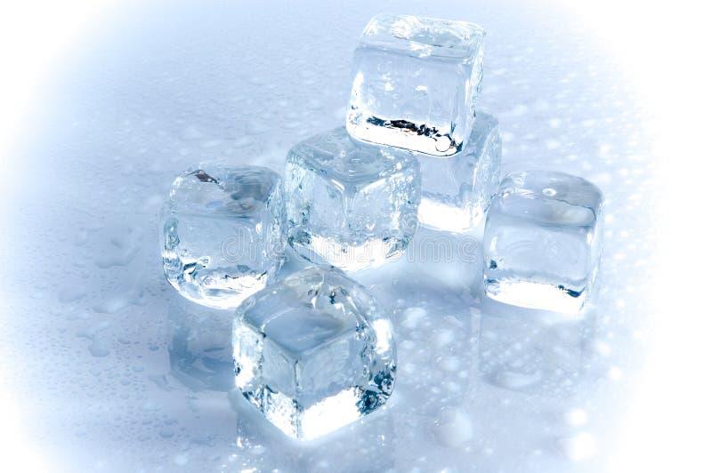 Cubo de hielo fotos de archivo libres de regalías