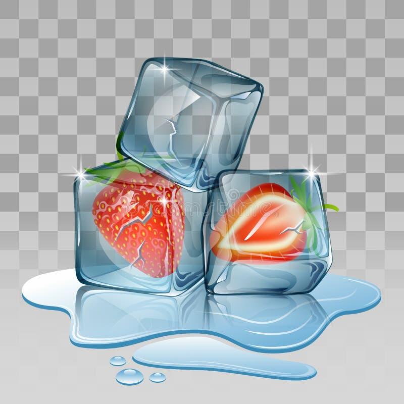 Cubo de hielo con la fresa ilustración del vector