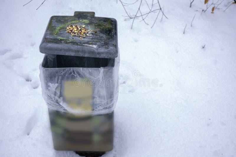 Cubo de la basura con la semilla del pájaro foto de archivo libre de regalías