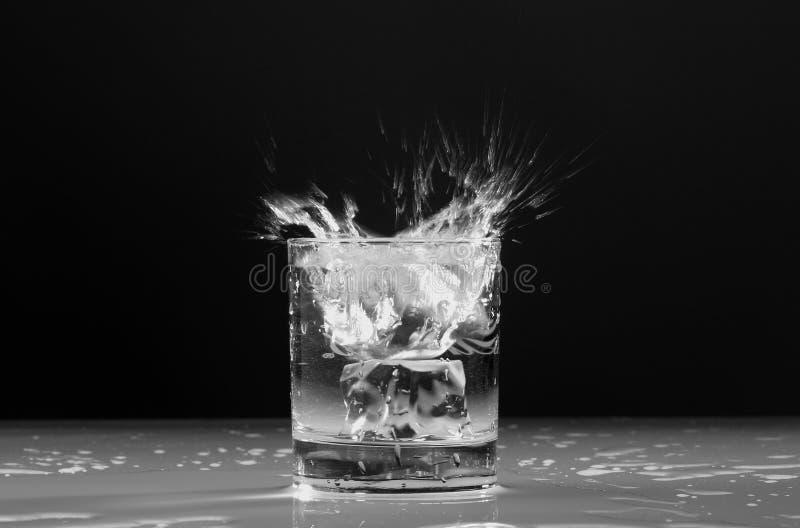 Cubo di ghiaccio della spruzzata nel vetro fotografia stock