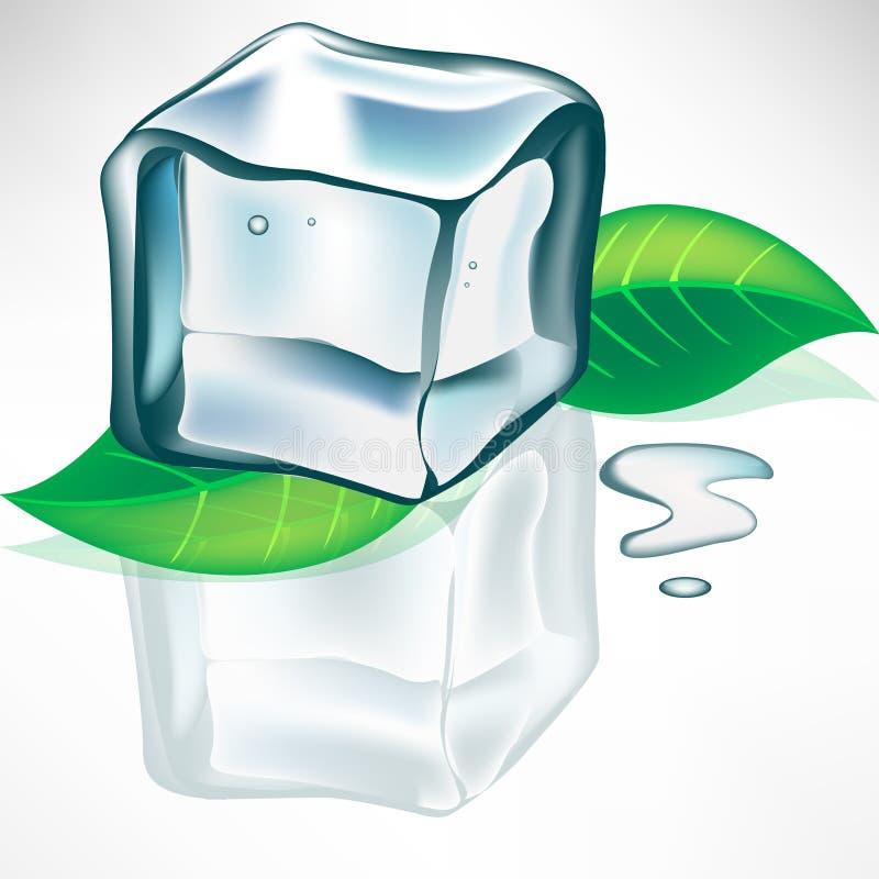 Cubo di ghiaccio di fusione con i fogli illustrazione di stock