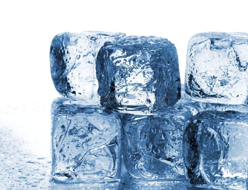 Cubos de gelo de derretimento fotografia de stock
