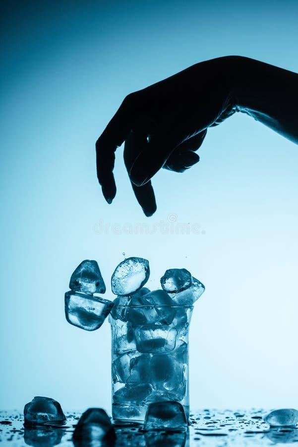 Cubos de gelo de jogo da pessoa no vidro fotografia de stock royalty free