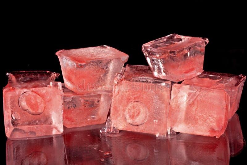 Cubos de gelo vermelhos fotos de stock