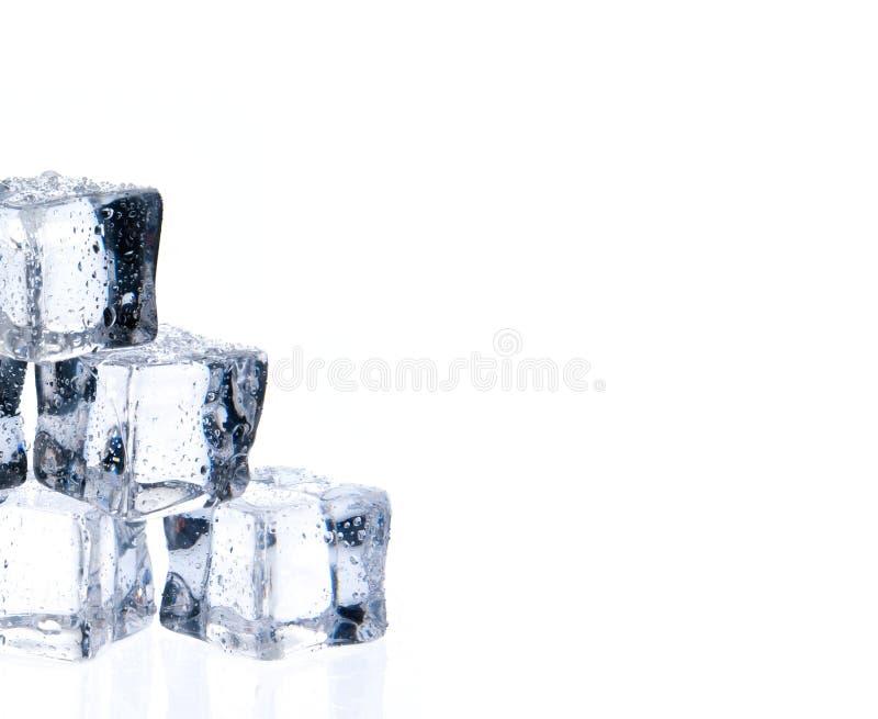 Cubos de hielo con descensos del agua en blanco fotografía de archivo