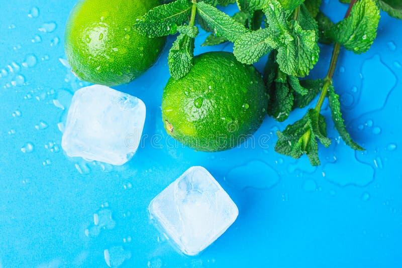 Cubos de hielo derretidos menta verde fresca orgánica madura de las cales en fondo azul claro con descensos del agua Ingredientes fotos de archivo libres de regalías
