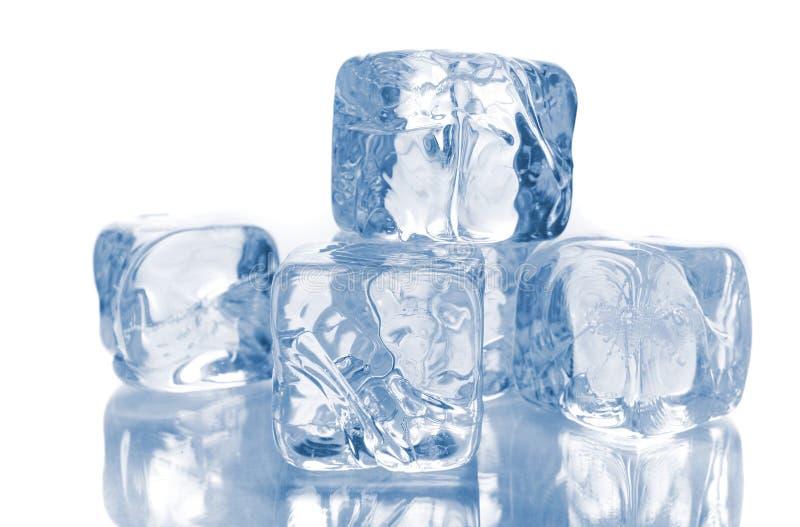 Cubos de hielo en blanco fotos de archivo