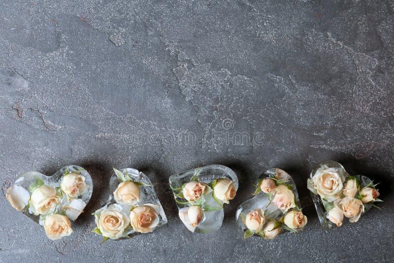 Cubos de hielo en forma de corazón con las rosas en fondo gris imagen de archivo libre de regalías