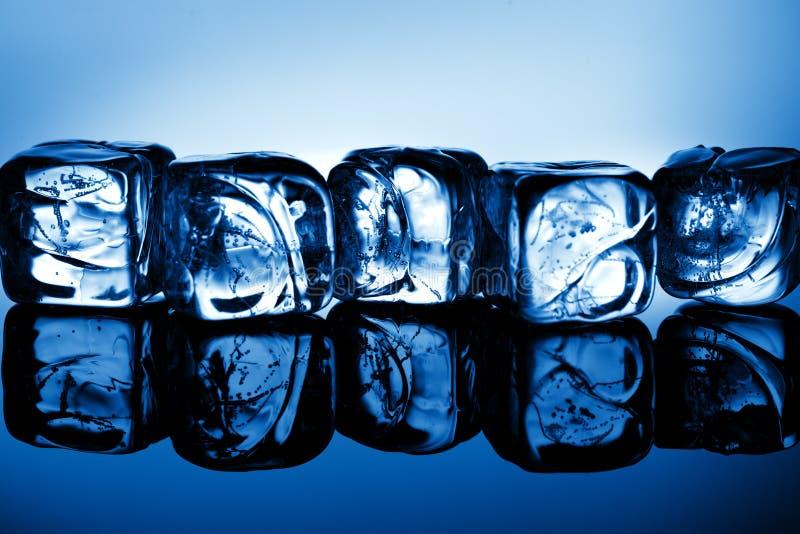 Cubos de hielo en luz azul imagen de archivo
