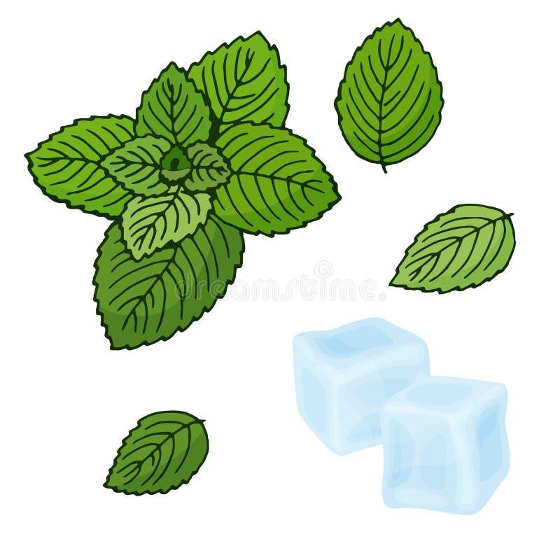 Cubos de la menta y de hielo Ilustración del vector Hierbabuena en un fondo blanco Objetos aislados Fijado para una restauración libre illustration