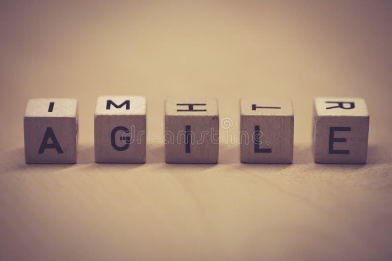 Cubos de madera que muestran la palabra ?gil en una tabla fotografía de archivo libre de regalías