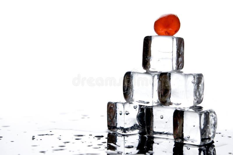 Cubos e cerejas de gelo imagem de stock royalty free