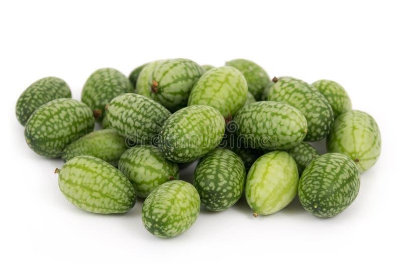 Cucamelon ou mousemelon do scabra de Melothria aka imagens de stock