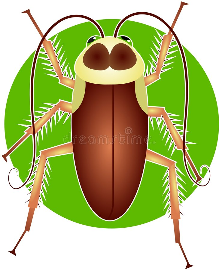 Cucaracha stock de ilustración