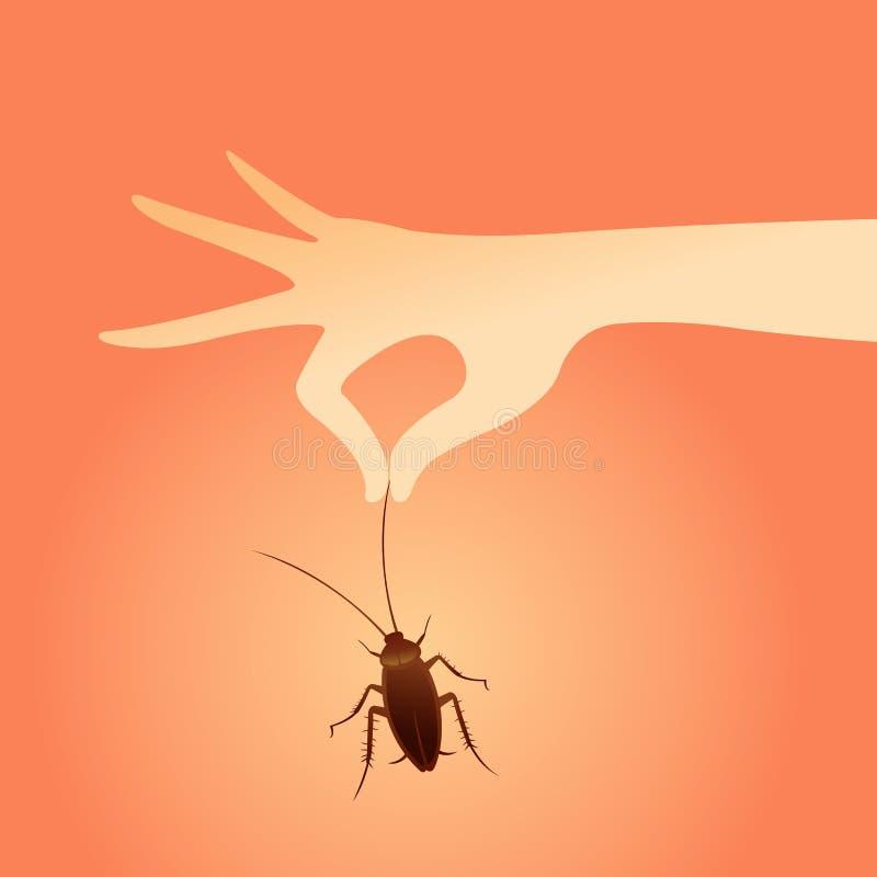 Cucaracha con la mano fotografía de archivo libre de regalías