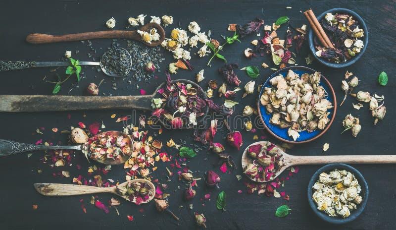Cucchiai di legno con le erbe asciutte, germogli di fiore sopra fondo scuro immagine stock