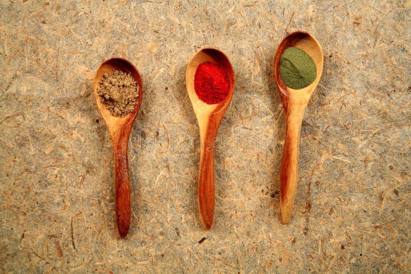 Cucchiai di legno e spezie secche. fotografie stock libere da diritti