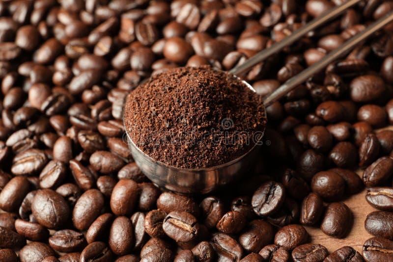 Cucchiaio con i motivi di caffè ed i semi di cacao torrefatti fotografia stock libera da diritti