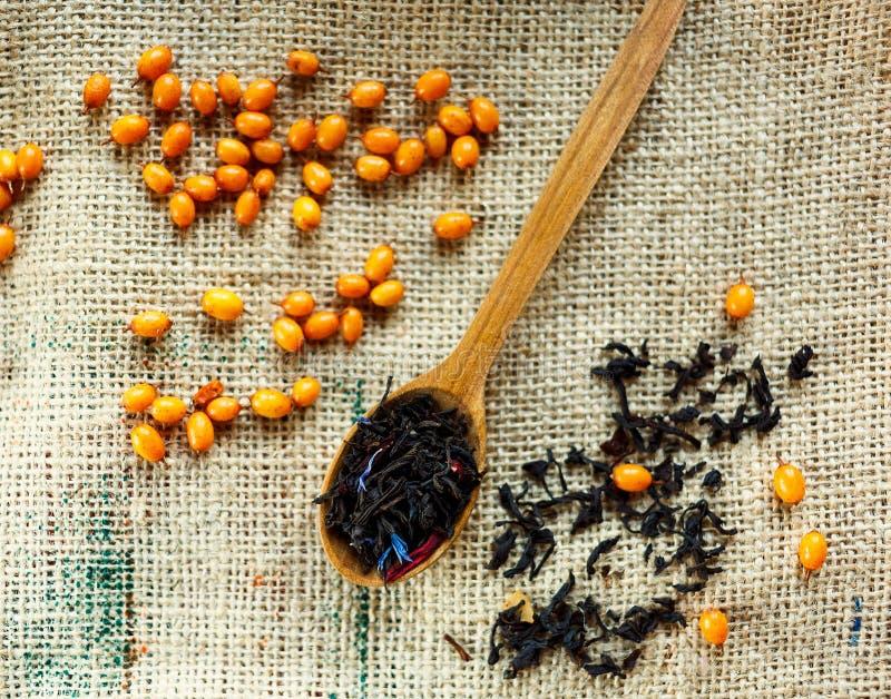 Cucchiaio di legno con tè nero e le bacche sane vitaminic dell'olivello spinoso sopra il fondo della tela di sacco bevanda organi fotografie stock