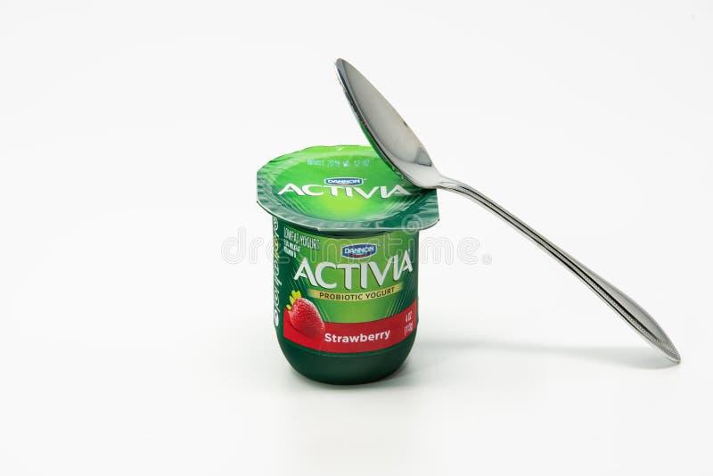Cucchiaio e una tazza probiotica del yogurt fotografia stock