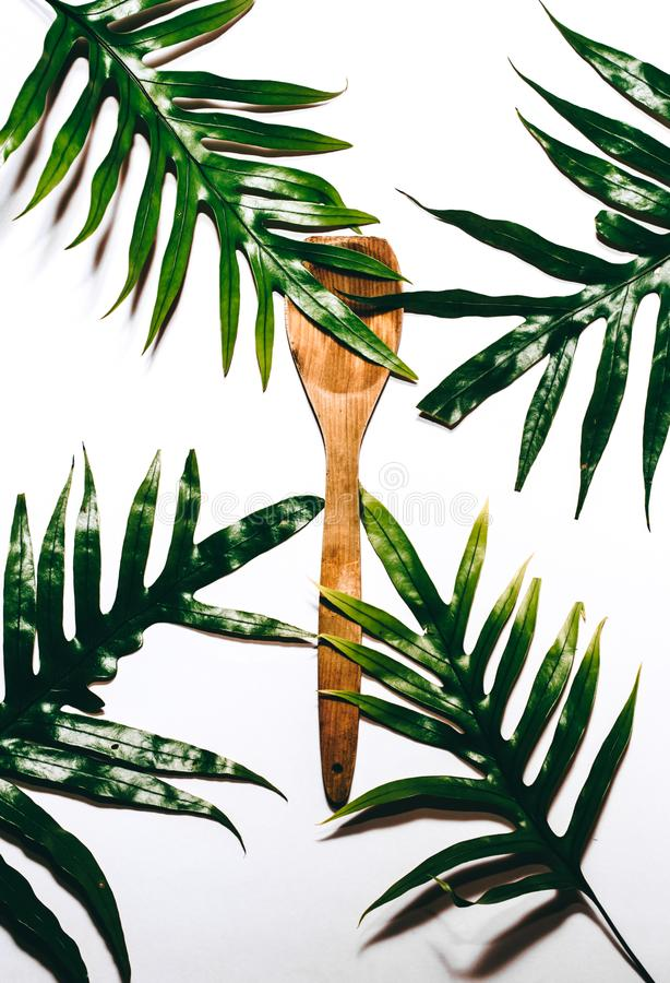 Cucchiaio tropicale fotografie stock