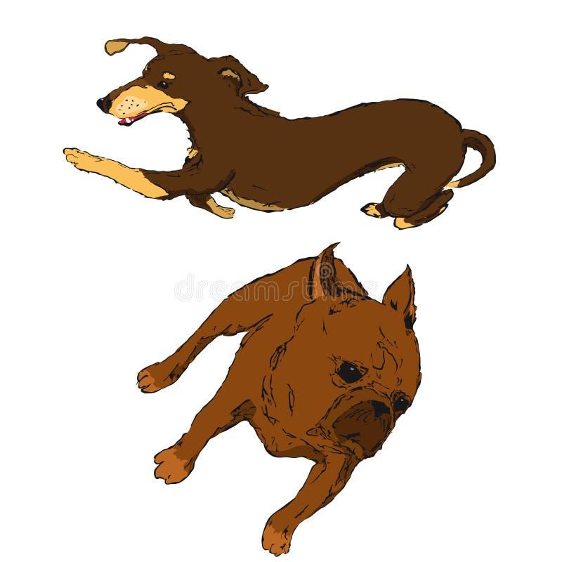 cuccioli del bassotto tedesco e del carlino fotografie stock