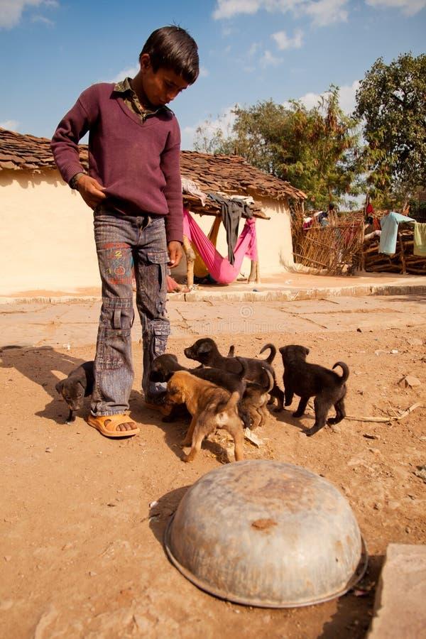 Cuccioli e ragazzo indiani svegli fotografie stock libere da diritti