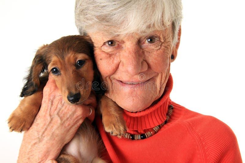 Cucciolo del bassotto tedesco e della donna fotografia stock