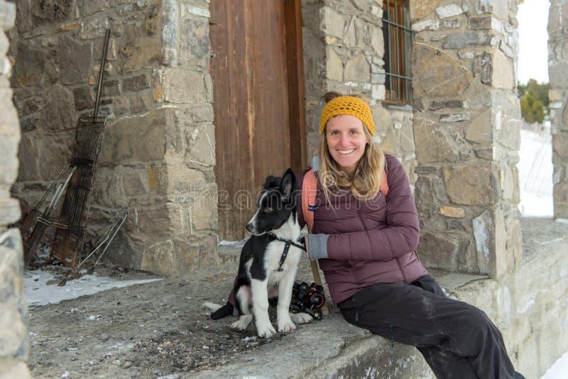 Cucciolo di border collie nel legno nell'inverno immagine stock libera da diritti