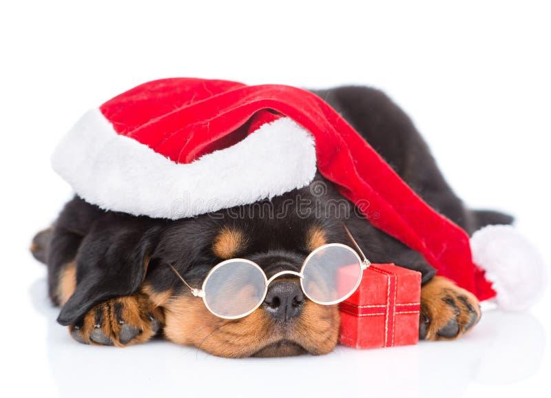 Cucciolo di Rottweiler con i vetri, il cappello rosso di Santa ed il contenitore di regalo Isolato fotografie stock libere da diritti