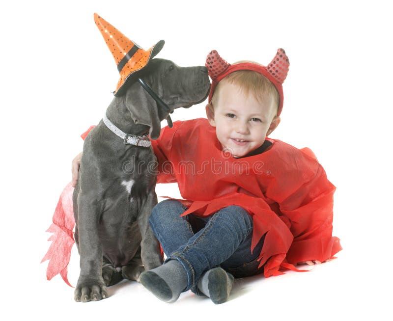 Cucciolo great dane e ragazzino fotografia stock