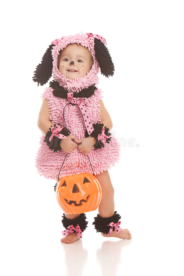 Cucciolo rosa fotografie stock libere da diritti