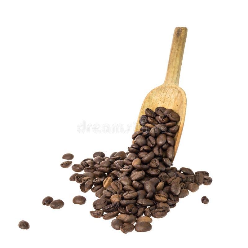 Cuchara con los granos de café imagen de archivo libre de regalías