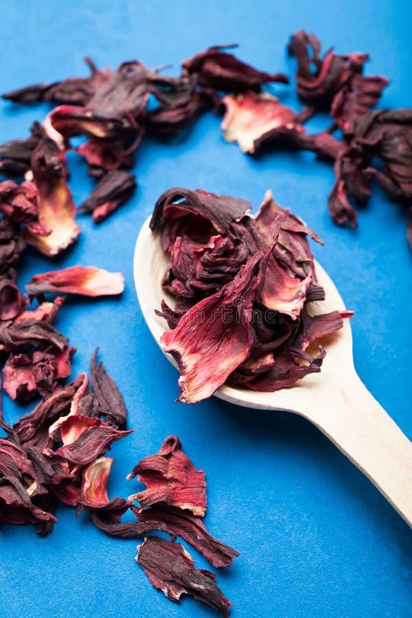 Cuchara con té secado del hibisco en un fondo azul foto de archivo