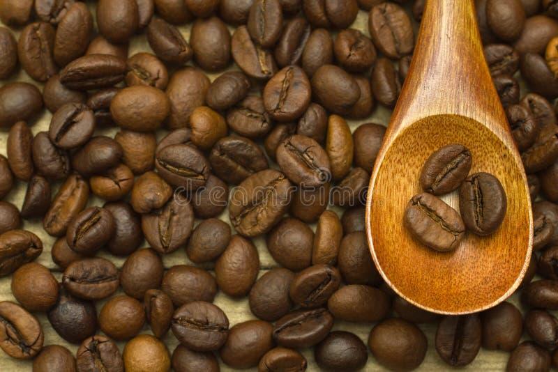 Cuchara de madera de la laca en fondo de los granos de café imágenes de archivo libres de regalías