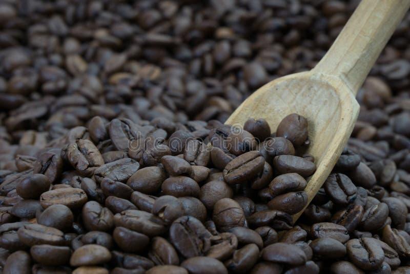 Cuchara en granos de café imagen de archivo libre de regalías