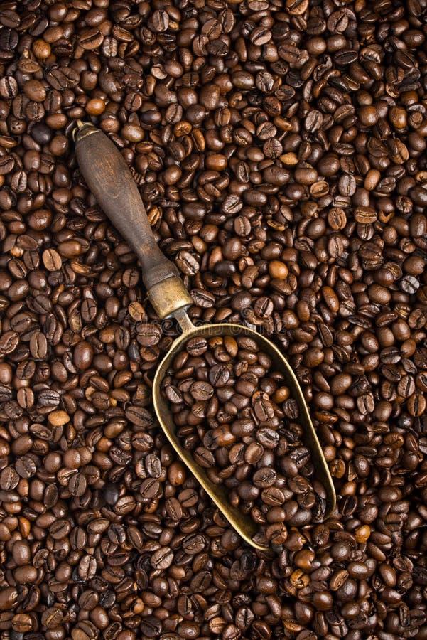 Cucharada retra con los granos de café asados fotografía de archivo libre de regalías