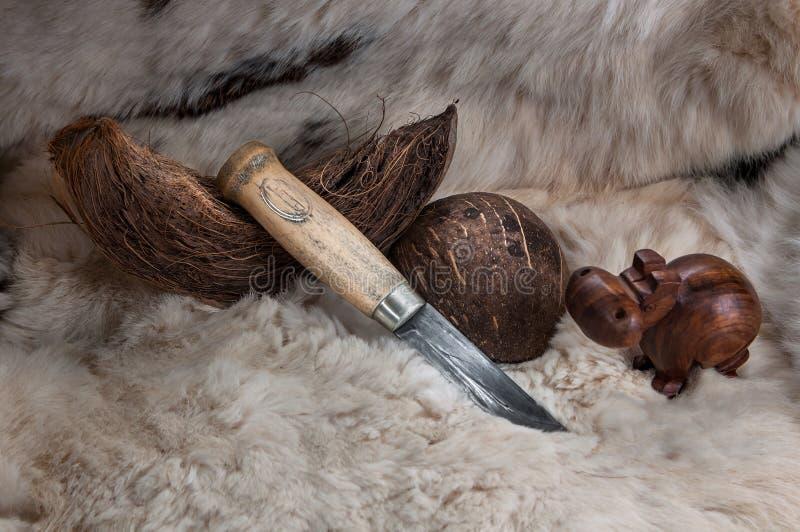 Cuchillo de caza con una manija de madera, en la piel con un coco fotos de archivo