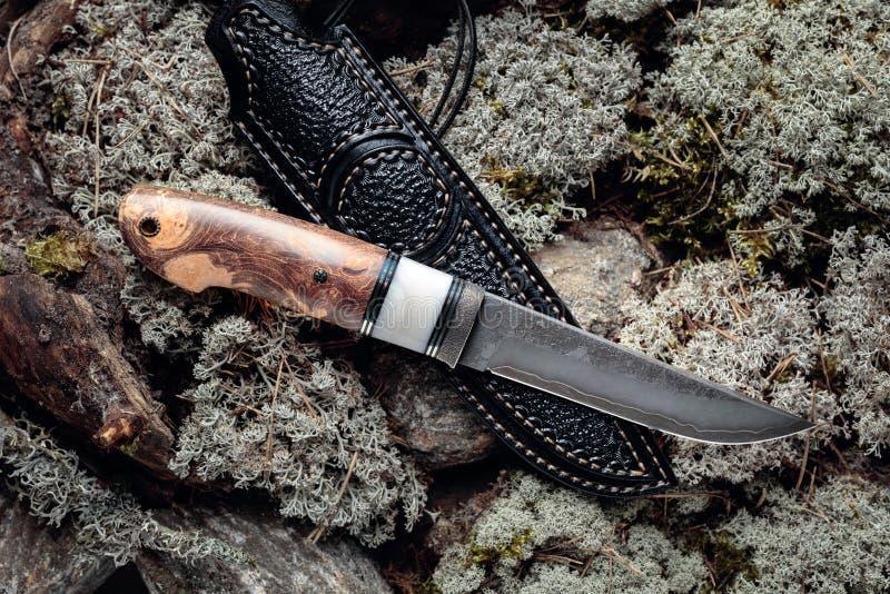 Cuchillo de combate de cazador hecho a mano con maleta en un musgo en el bosque foto de archivo libre de regalías