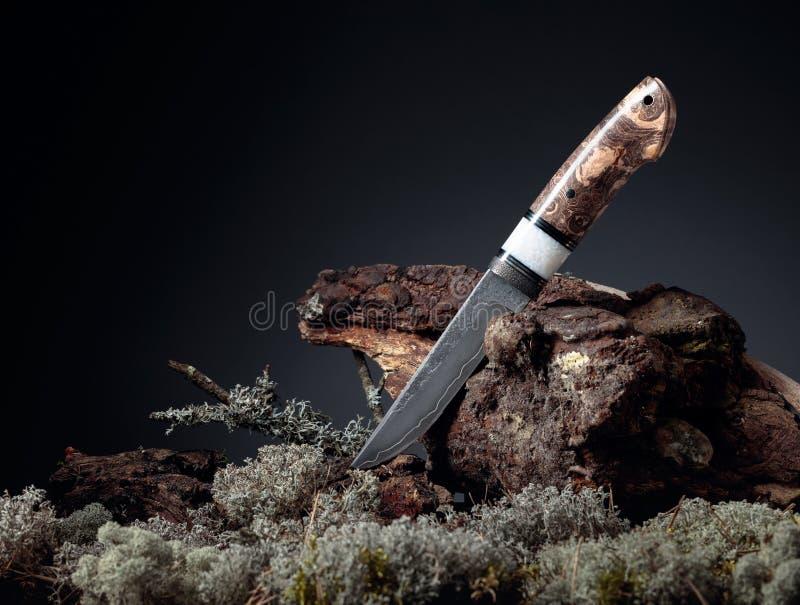 Cuchillo hecho a mano en combate de cazador La superficie de la hoja - grabado, trazas de forja Mano - Arce japonés fotografía de archivo