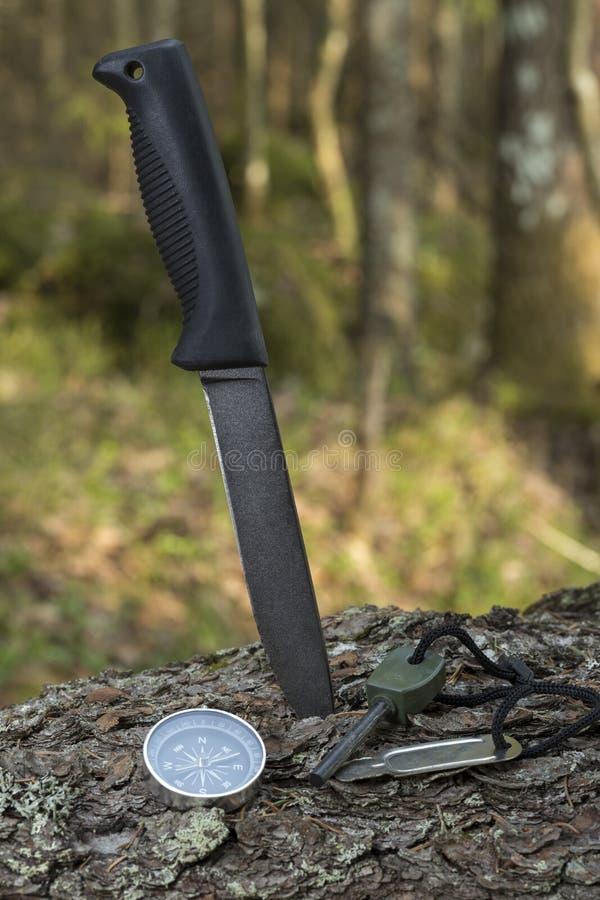 Cuchillo, linterna, compás, pedernal en el tocón en el bosque fotografía de archivo libre de regalías