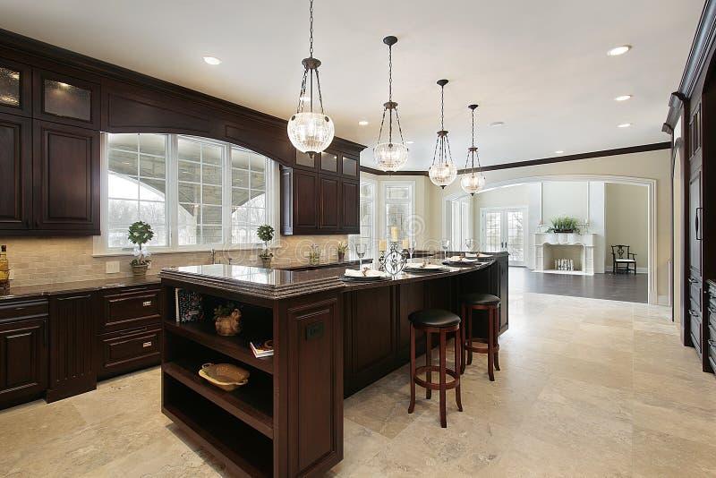 Cucina con cabinetry di legno scuro immagine stock libera da diritti