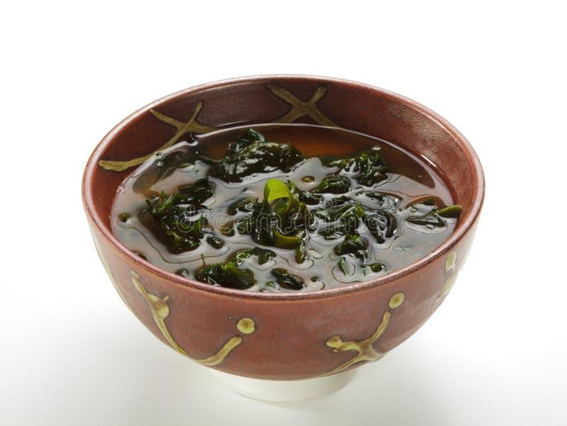 Cucina giapponese - minestra di miso fotografie stock
